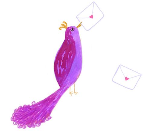contact_bird_e219394e-3f51-49a2-a1fd-35ee7c8ce08d_large